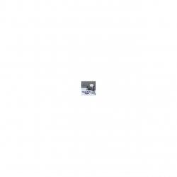 Aparat de calcat vertical cu abur Russell Hobbs Steam Genie 25600-56, 1650 W, 220 ml, 3 accesorii, Alb/Mov